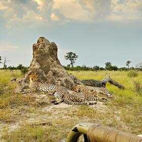 vzpomínky na Afriku (23)