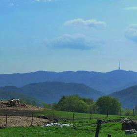 Cestou z hradu Blansko