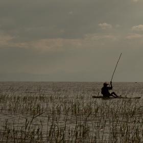 Ranní rybolov