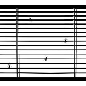 čierne na bielom: za sklom II