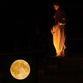 Levitující Venuše
