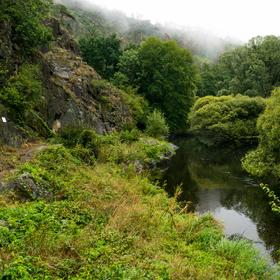 Meandr řeky Jihlavy