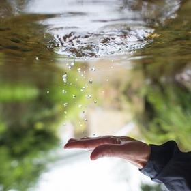 Perly prší z nebe