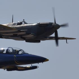 Spitfire Mk.XVIE, L-39 Albatros