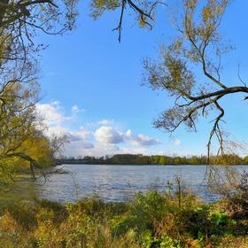 Podzimní rybník Nová Louka...