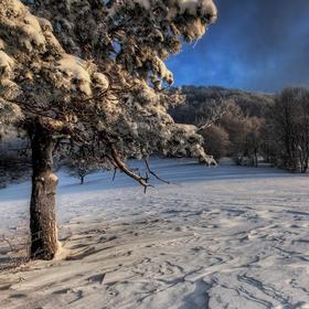 Zima a mráz
