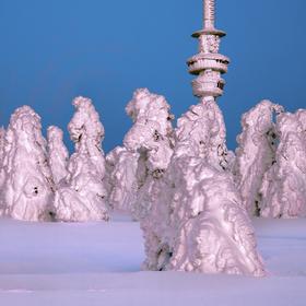 Sněhové sochy na Pradědu