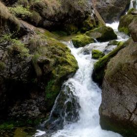 V soutěsce - Wasserloch Palfau - Rakousko