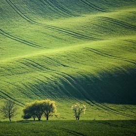 Mistřínské vlnění při západu slunce...:-)