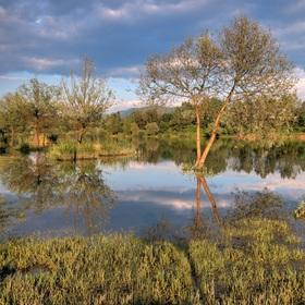Zatopený rybník