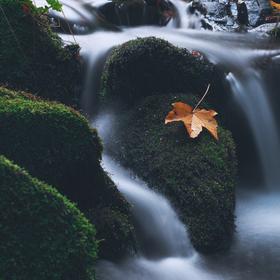 Podzimní Tyra