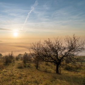 Ráno na Rané (Oblík, Srdov, Brník)