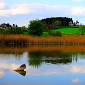 Rybník z jara