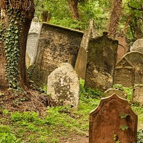 Z hřbitova