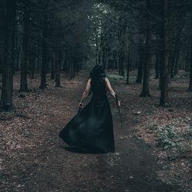 Assassin v lese