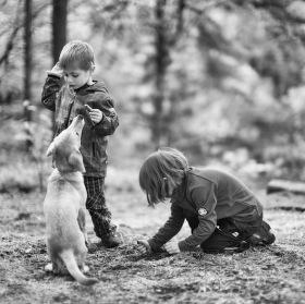 děti a pes