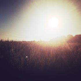 Slunečná
