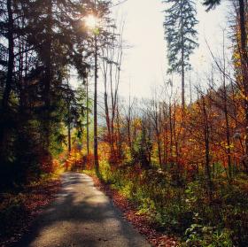 Podzimní procházka:)