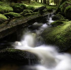 Lipový potok