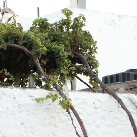 Řecký příbytek