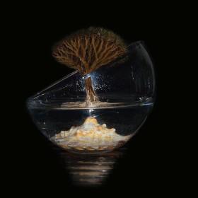Strom života (čekám na vaše názory)