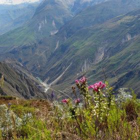 Pohled do caňonu řeky Apúrimac, Peru