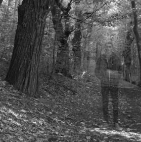 procházka v lese.