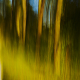 Podzimní malování na dlouhou závěrku