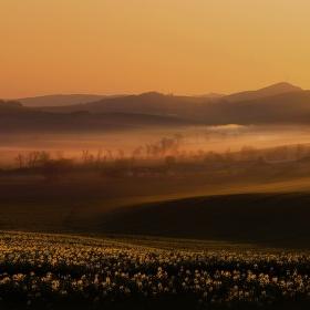 Ráno na Jižní Moravě