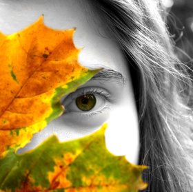 Podzimní ..