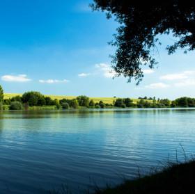 Letní Čehovský rybník.