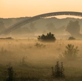 Ráno u řeky II