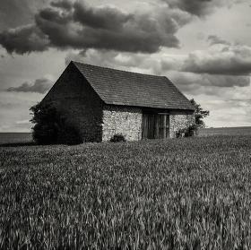V polích před bouří..