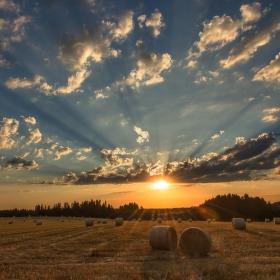 -Další z horkých letních dnů pomalu končí,všude už je klid a vůně slámy je cítit v dalekém okolí...