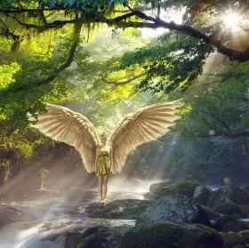 wings-resurrection