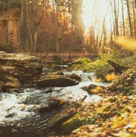 Podzim v Novohradských horách