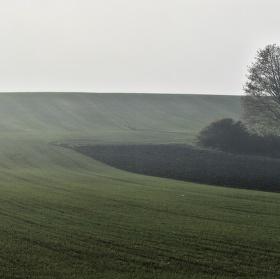 Údolí stínů
