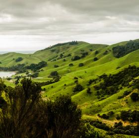New Zealand Coromandel
