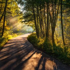 Slunečná cesta