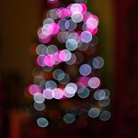 Vánoční snění