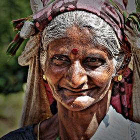 Sběračka čaje - Sri Lamka
