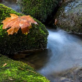 Na Záběhlickém potoku