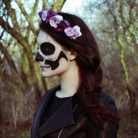 Skeleton/Kostra