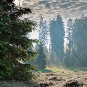 Šumava - Stodůlky