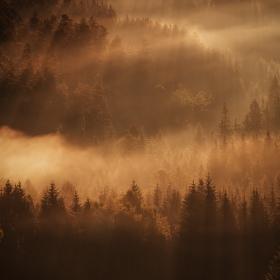 Prořezávání mlhy