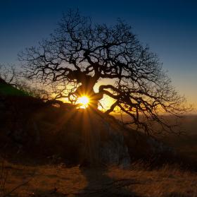 svítání nad Pálavou