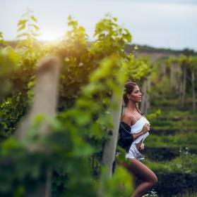 Sabina na vinici