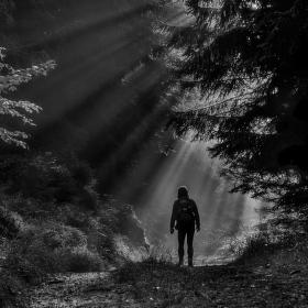 Čarodějka a ranní mysterium
