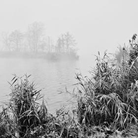 V zajetí mlhy
