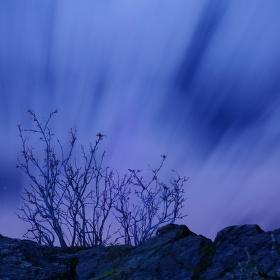 noční Řivnáč